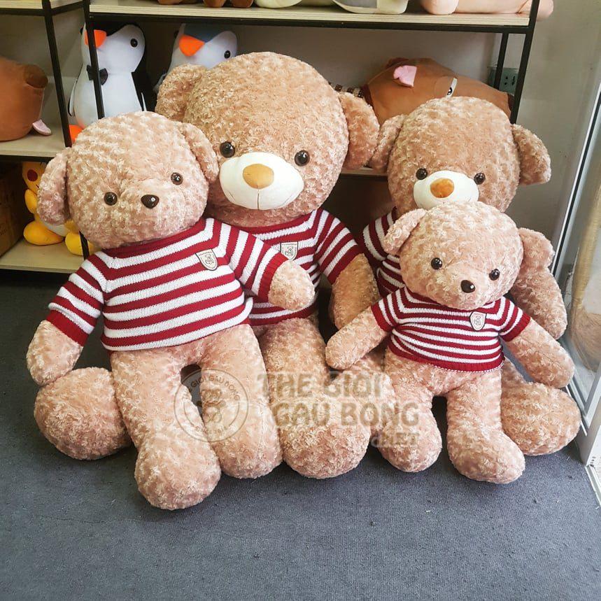 Gấu Teddy Hà Nội size 1m2 và 1m5 thích hợp làm quà tặng bạn gái