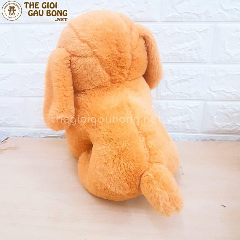 Cún bông vàng nâu cute