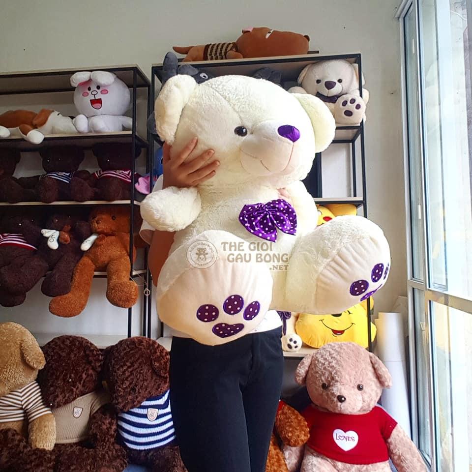 gấu trắng teddy size 60cm