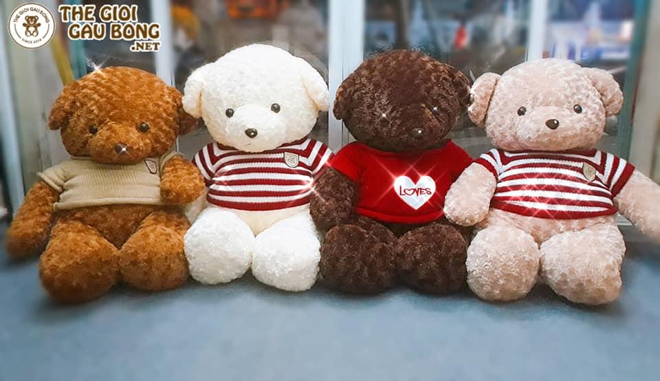 Gấu Teddy có 4 màu và 4 mẫu áo