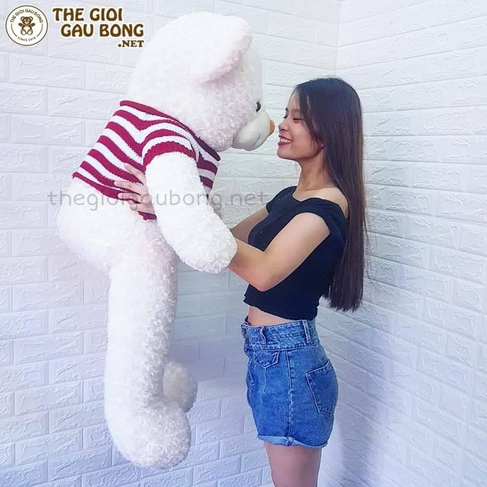 Gấu teddy 1m3