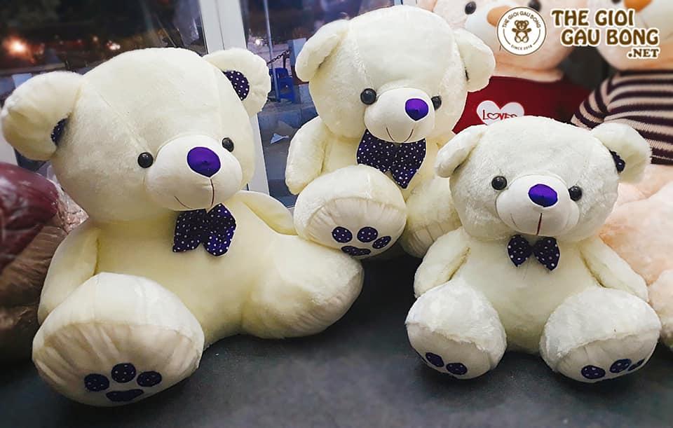 gấu bông teddy size 90cm, 60cm, 50cm