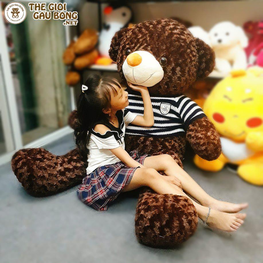 Gấu Teddy Hà Nội size 1m5 thích hợp làm quà tặng bạn gái