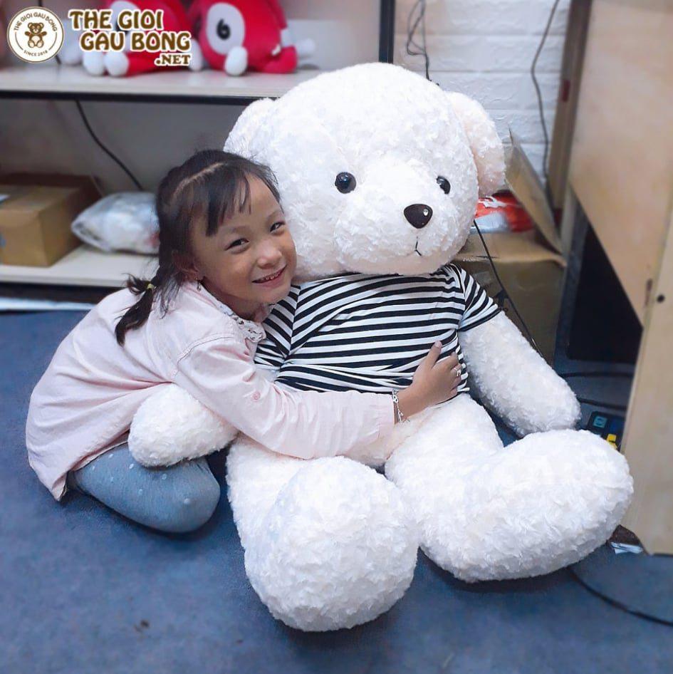 Gấu bông 1m2